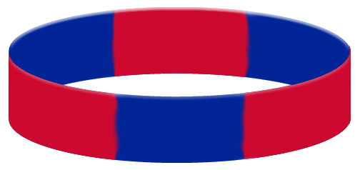 Wristband Color Example - Segmented