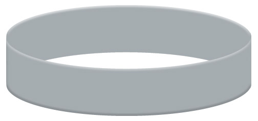 Wristband Color Example - Gray