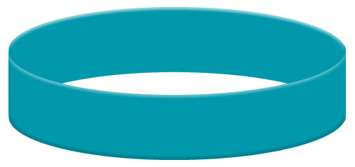 Wristband Color Example - Teal